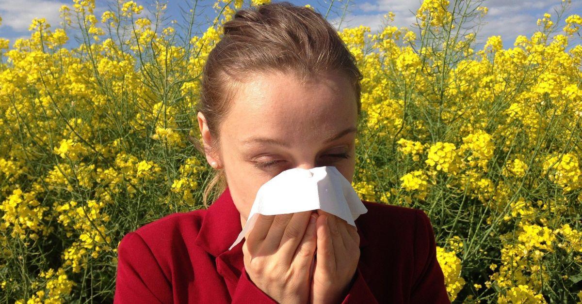 Висока концентрация на полени във въздуха през тази седмица. За