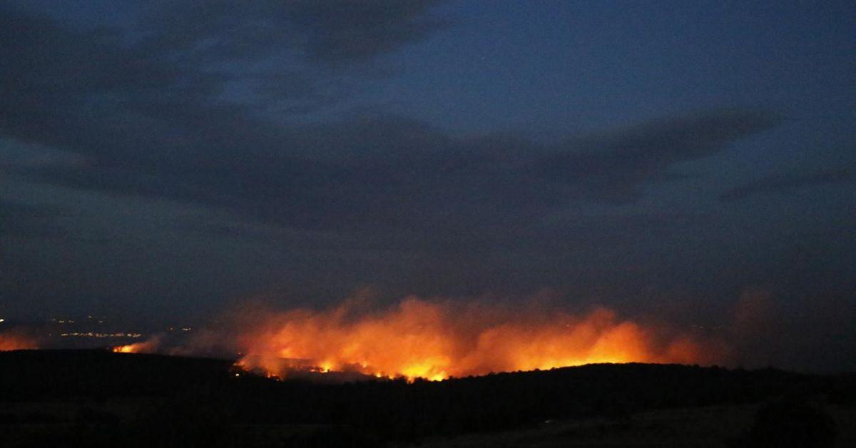 Локализираха горския пожар в района на Твърдица. Опожарени са стотици
